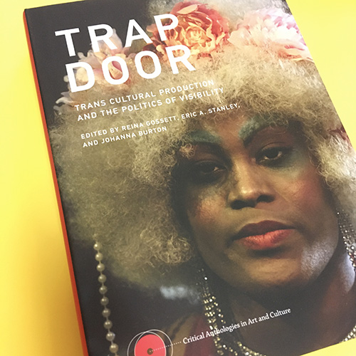 Trap Door : Trans Cultural Production and the Politics of Visibility
